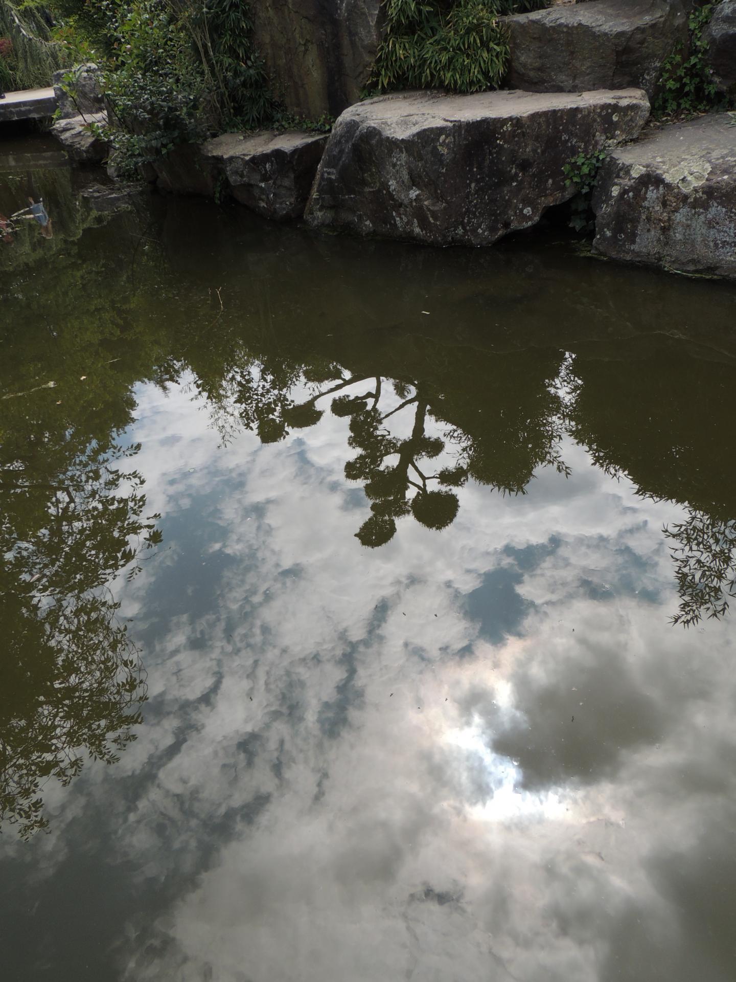 www.ateliercannelle.com - Bonsai Nantes zen garden